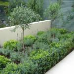 Earlsfield large contemporary garden Mediterranean style