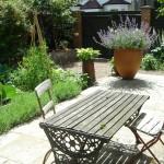 Balham edible vegetable family garden
