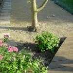 clapham family garden by henrietta gentilli garden design