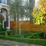 Clapham formal parterre front garden ideas, mediterranean style