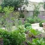 clapham common front garden