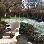 chelsea contemporary gardens landscape design