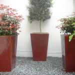 South Kensington Basement Garden