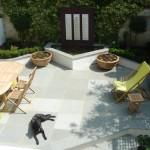 Chelsea minimalist bright garden crisp and dynamic