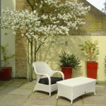 Garden plan: Wandsworth Common Terrace strong colours and shapes