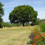 Petworth Sussex Country garden naturalistic and rural setting