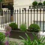 clapham common front gardens