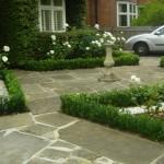 Battersea Earlsfield formal front garden billowing roses