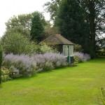 Surrey landscaped garden Jekyll inspired, exuberant borders