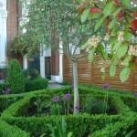 Clapham formal parterre front garden ideas,mediterranean style