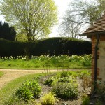 Petworth West Sussex country garden naturalistic style, deciduous and evergreen trees and shrubs for seasonal change