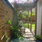 earlsfield mediterranean garden